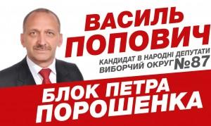 попович_1