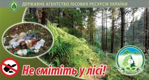 ліс-ДП